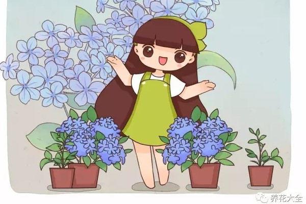 这花长得刹不住闸,爆满整个阳台,赶紧掐枝分给邻居!