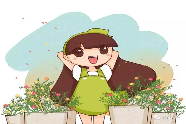小时候玩儿过的花,你还记得多少?