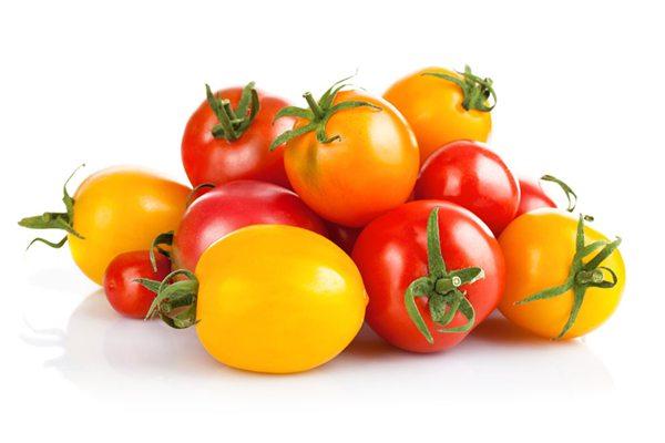 番茄的主要价值