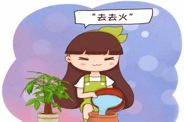 """刚买的花盆,得先""""去去火"""",否则不管啥花,"""