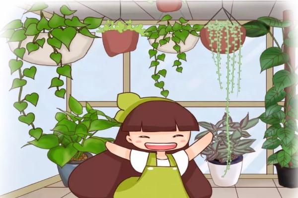 """阳台扔上这9种花,蹭蹭直冒芽,3个月长成了""""瀑布""""!"""