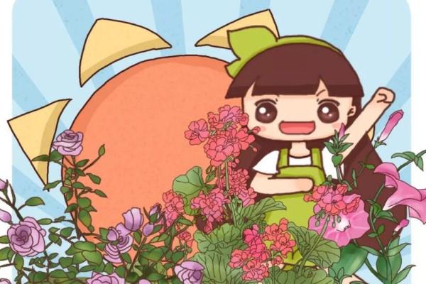 这7种花最爱晒太阳,越晒花越多,1个月就爆盆!