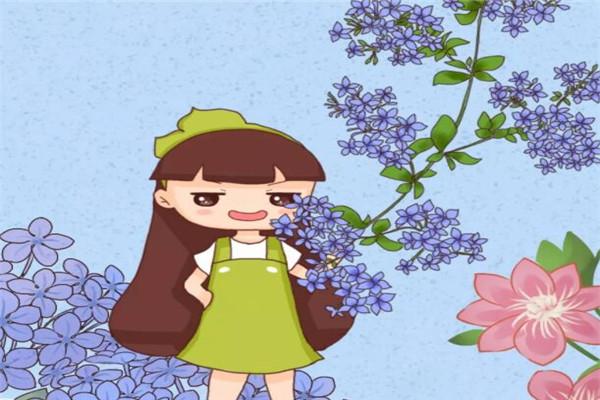 让你的庭院美翻天的12种花!