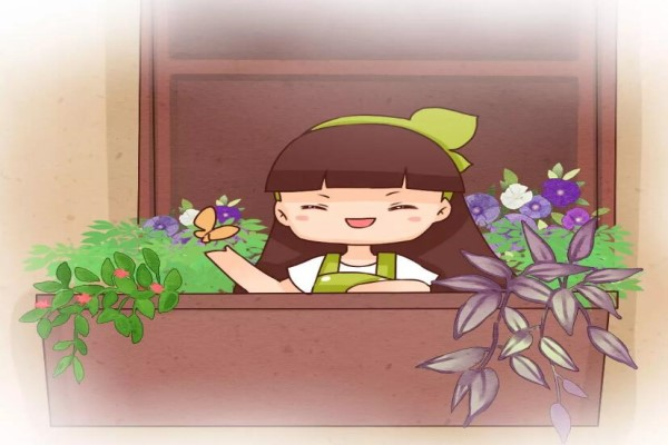 有花园有猫咪,小学老师把日子过成诗......