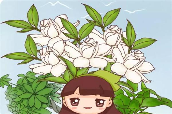 春天啥花都可以不养,唯独这6种,不养亏大了!