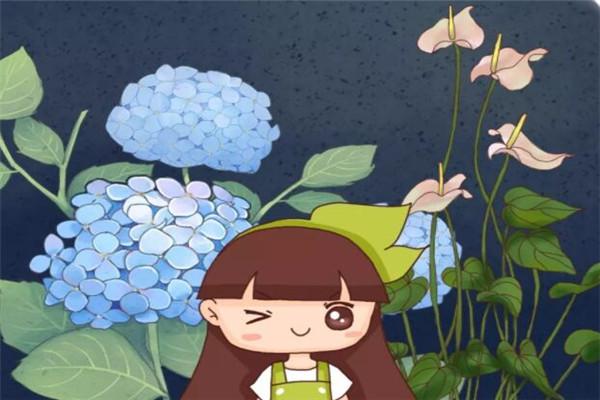 这20种花,越阴凉长得越旺,越晒越容易死!