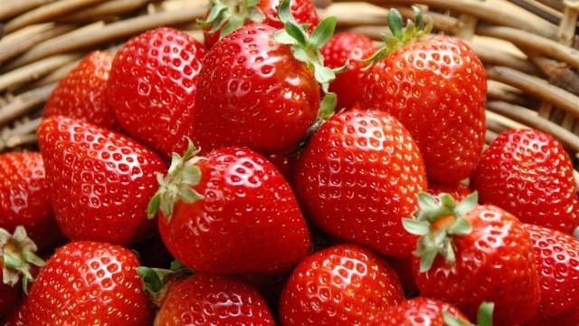 草莓叶子发黄怎么办
