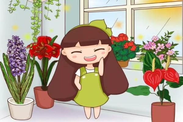 家里这个位置,摆盆红色的花,财运滚滚桃花旺!
