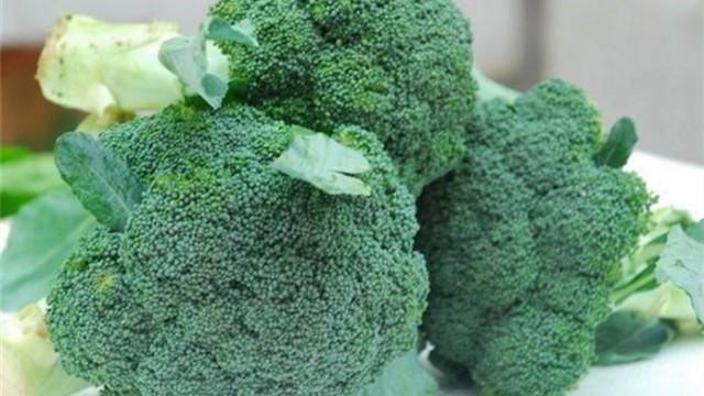 白花菜和绿花菜有什么区别