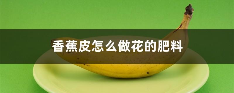 香蕉皮怎么做花的肥料